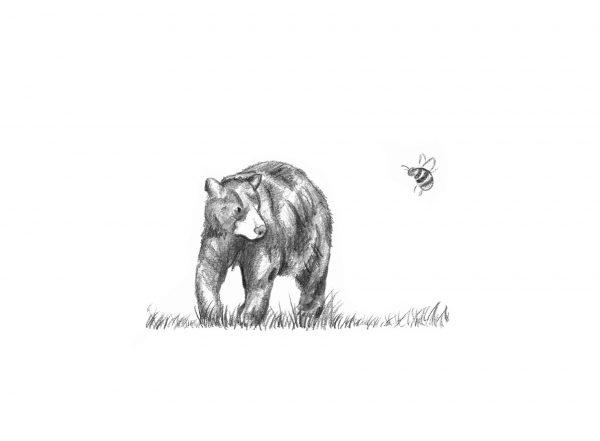 A3 'The Bear the Bee' print