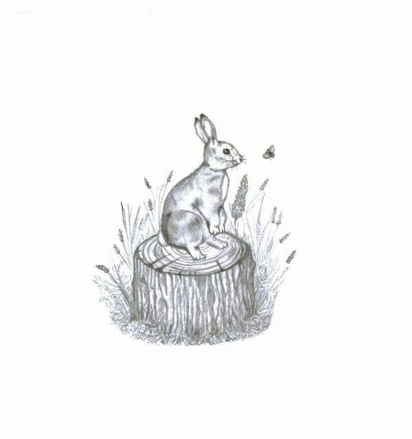 A4 'The Bunny & The Bee' print