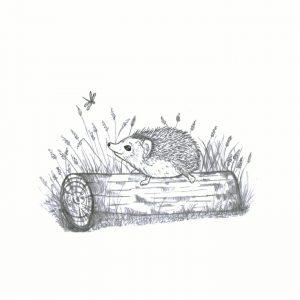 A4 print 'Hedgehog'
